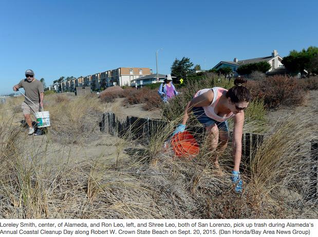 Nea Coastal Cleanup